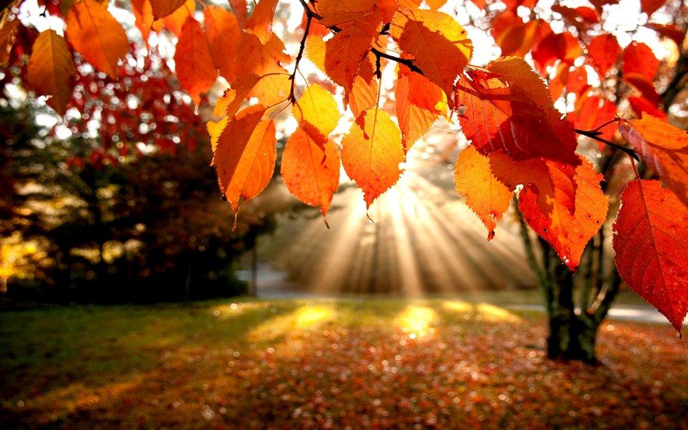 Previsioni Weekend 11-13 Ottobre: alta pressione e rialzo termico!