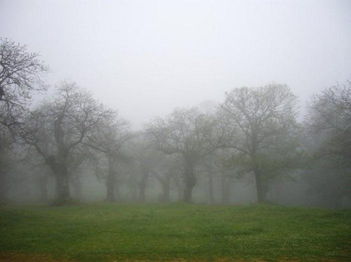 Previsioni settimana 29-31 ottobre: autunno vero anche dal punto di vista termico!
